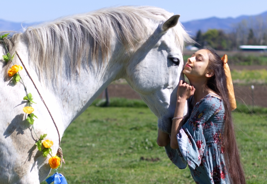 Safa Qureshi with her white horse
